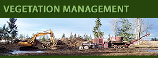 Tacoma, Puyallup, Seattle, Gig Harbor Vegetation Management